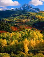mount,sneffels,splendor,atumn,colorado