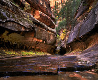 canyon,tunnel,colorado,plateau,zion,national,park