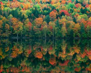 Autumn's Masterpiece