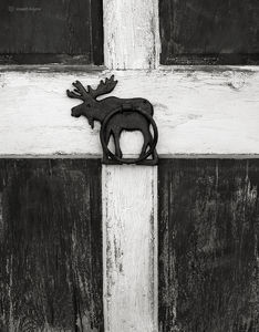 Moose Barn Door