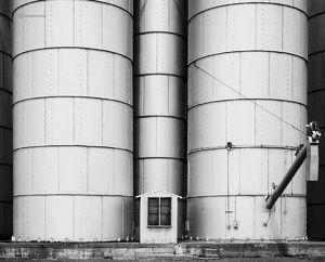 The Grain Co-op