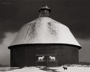 Round Barn & Dog