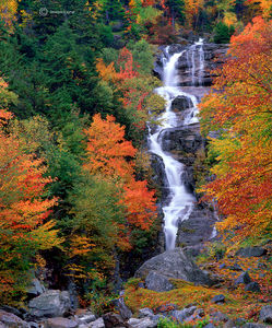 Silver Cascade, Autumn