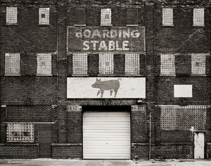 The Boarding Stable
