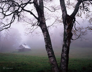 Old Sugar House In Fog
