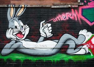 Bugs...The Street Artist