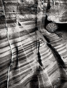 Canyon Chamber