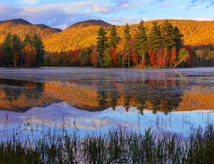Vermont Pond, Autumn