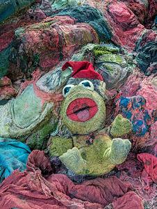 Forgotten Kermit