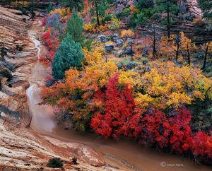 Canyon Rainbow