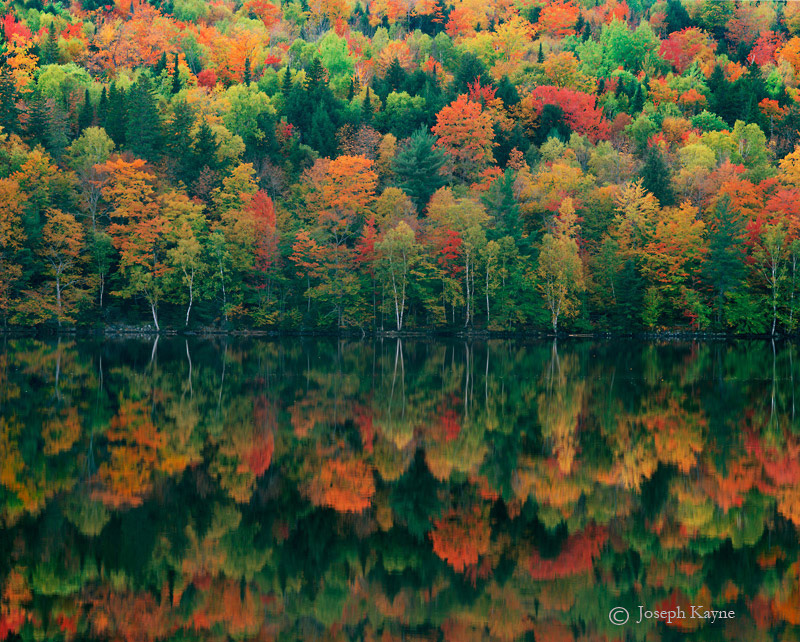 autumn,masterpiece,maine