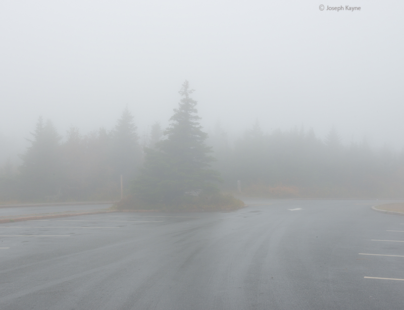 Foggy Morning On Top Of Cadillac Mountain