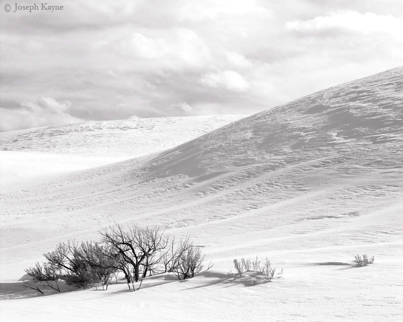 snow,mound,sagebrush,wyoming,yellowstone,national,park