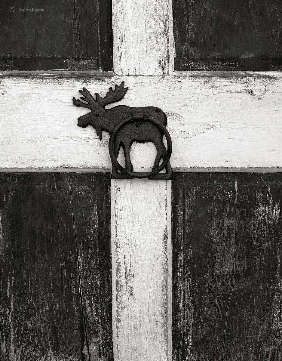 moose,barn,door,maine, photo
