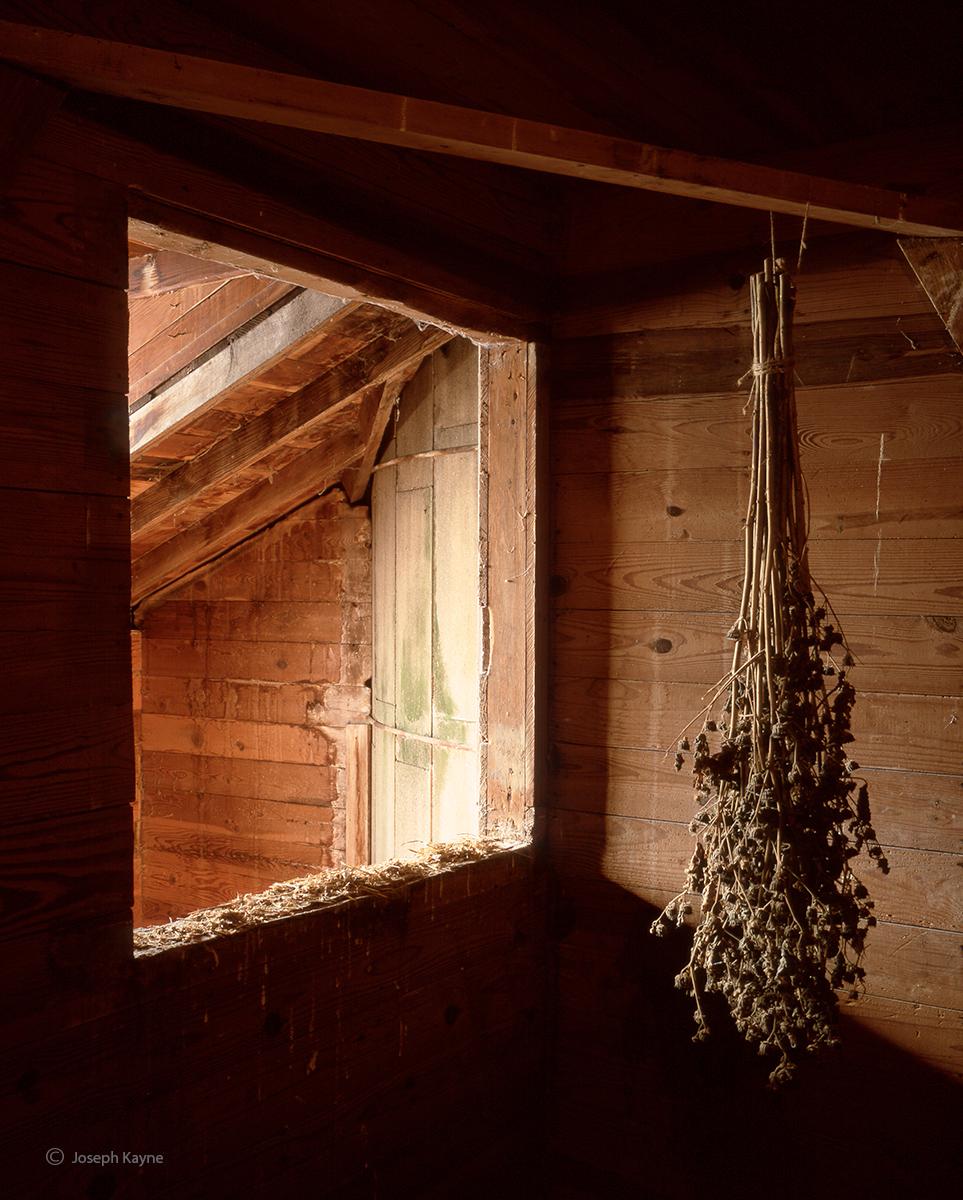 Barn Interior, illinois