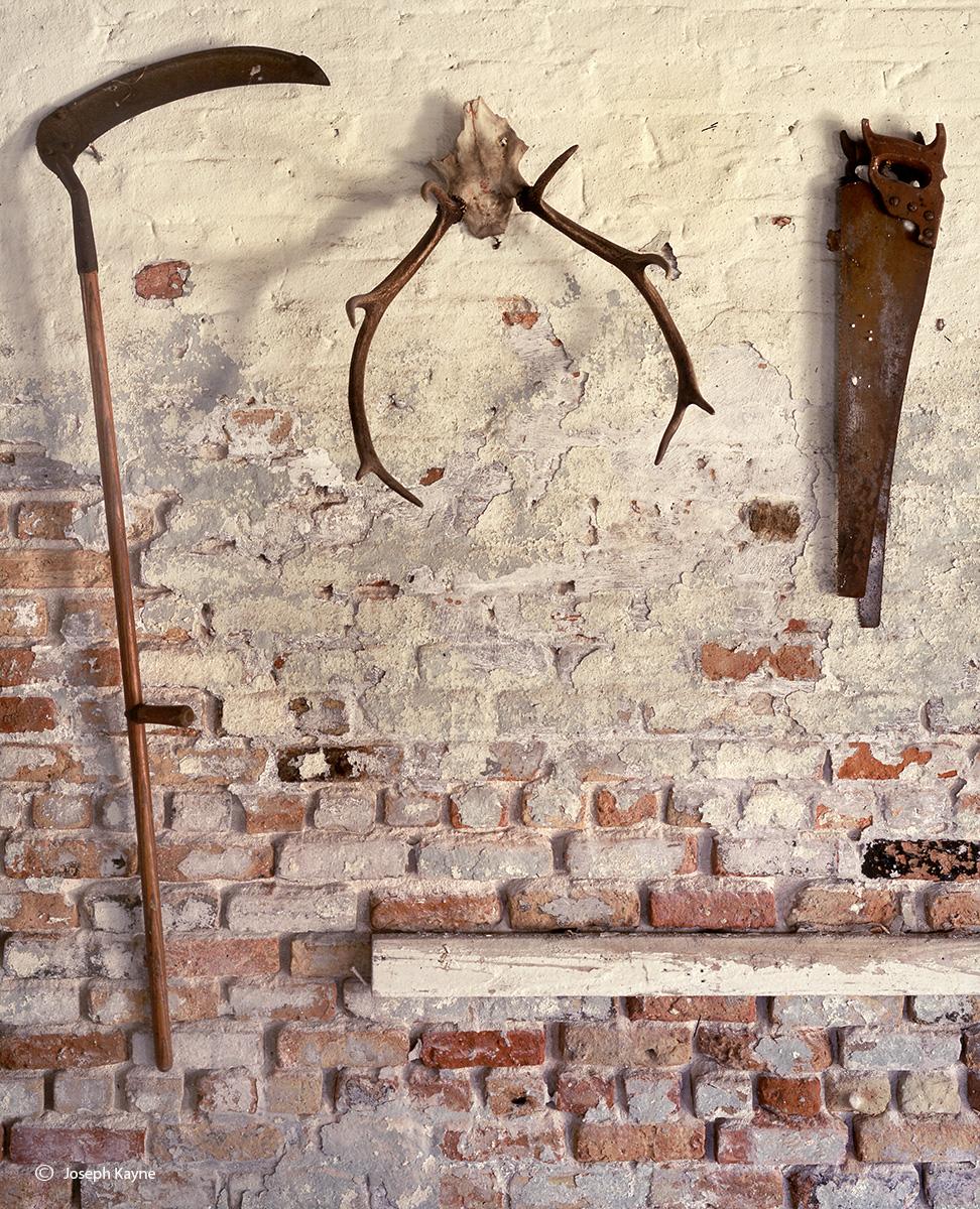 barn,tools,skull,illinois, photo