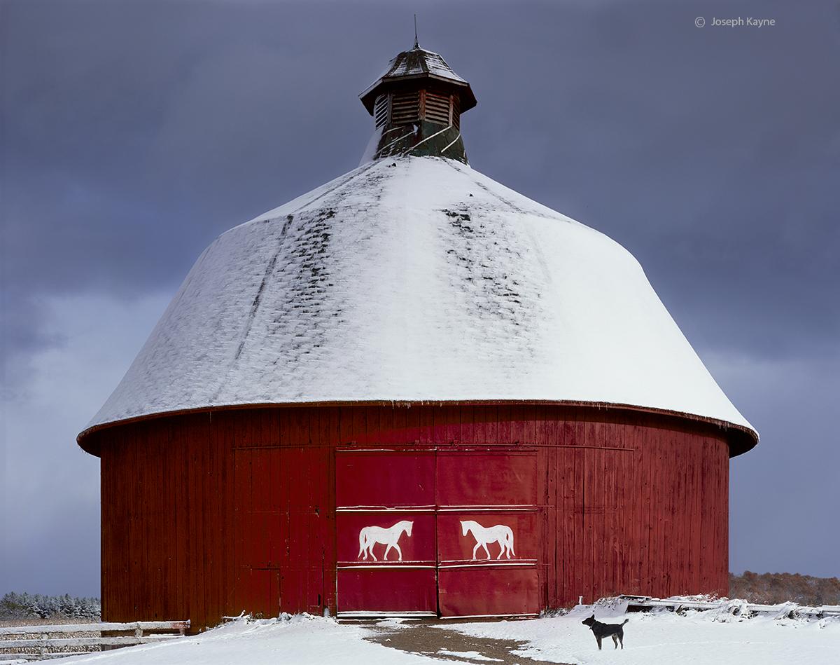 horse,round,barn,michigan,winter, photo