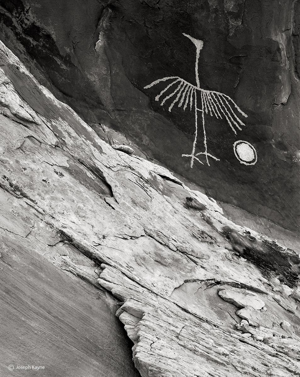 canyon,visitor,colorado,plateau,ancestral,puebloan,petroglyph, photo