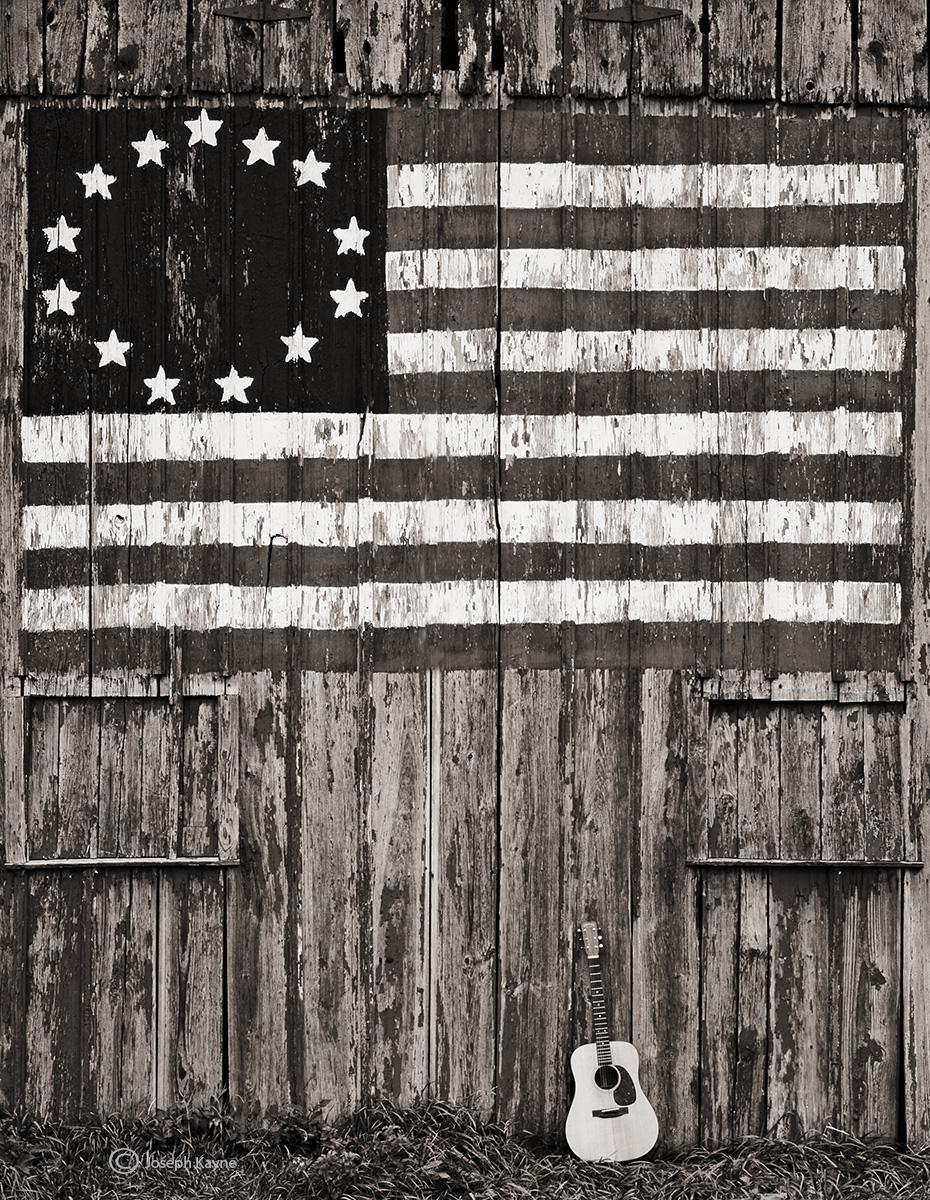 america,guitar,illinois, photo