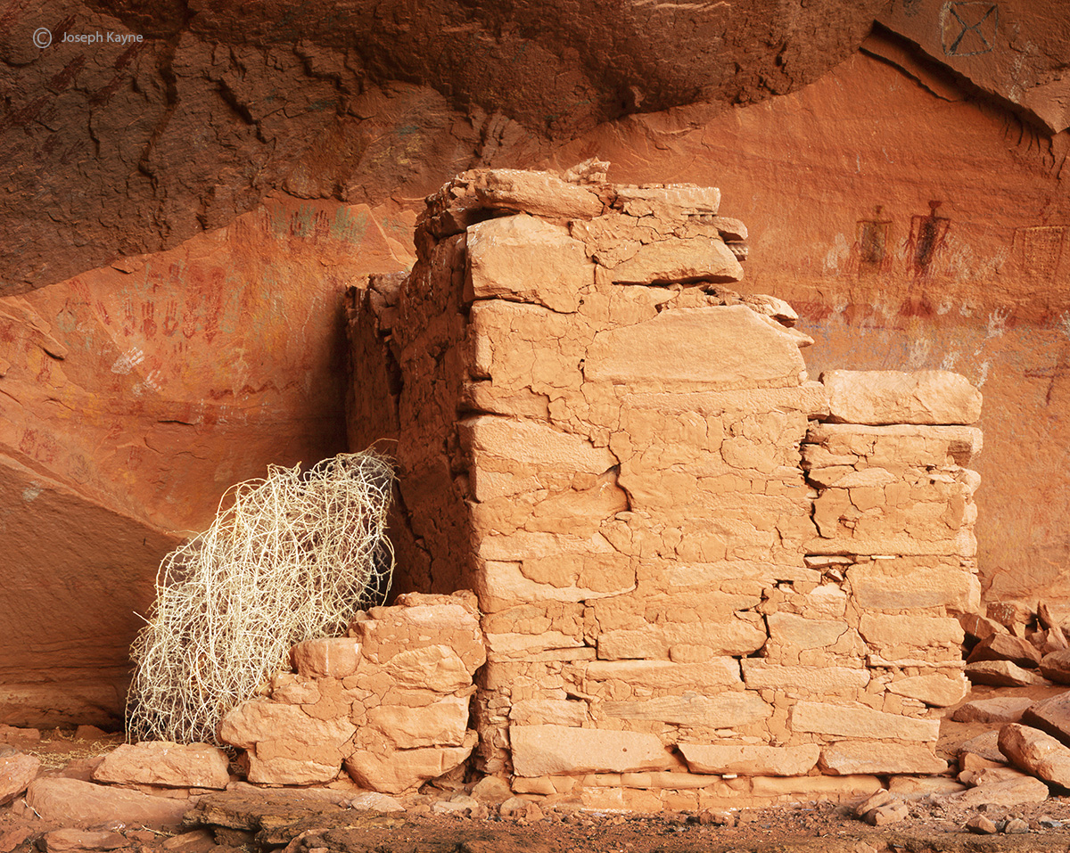tumbleweed,ruin,colorado,plateau,ancestral,puebloan,site, photo