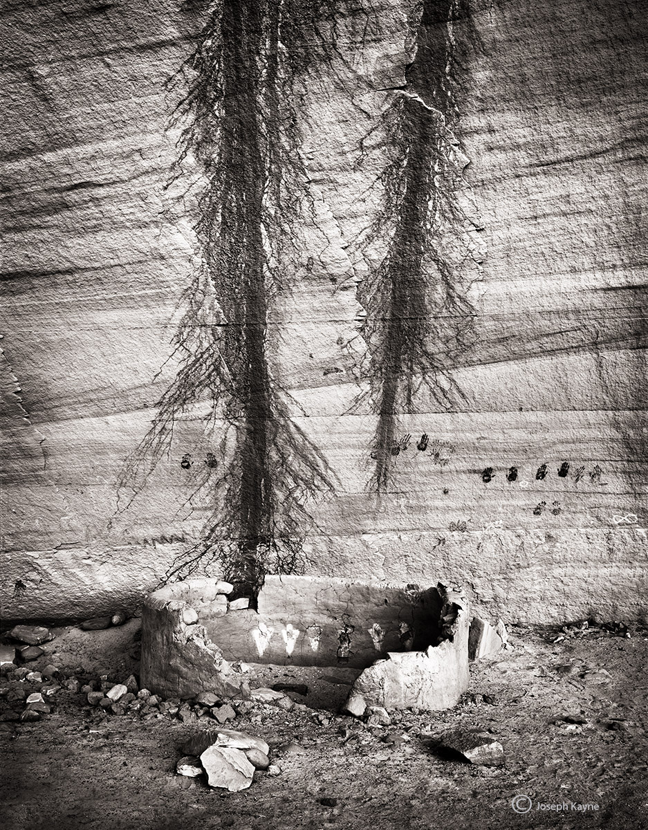 withering,structure,colorado,plateau,ancestral,puebloan,site, photo