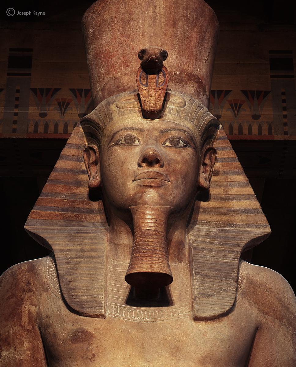 king,tut,chicago,egyptian,statue, photo