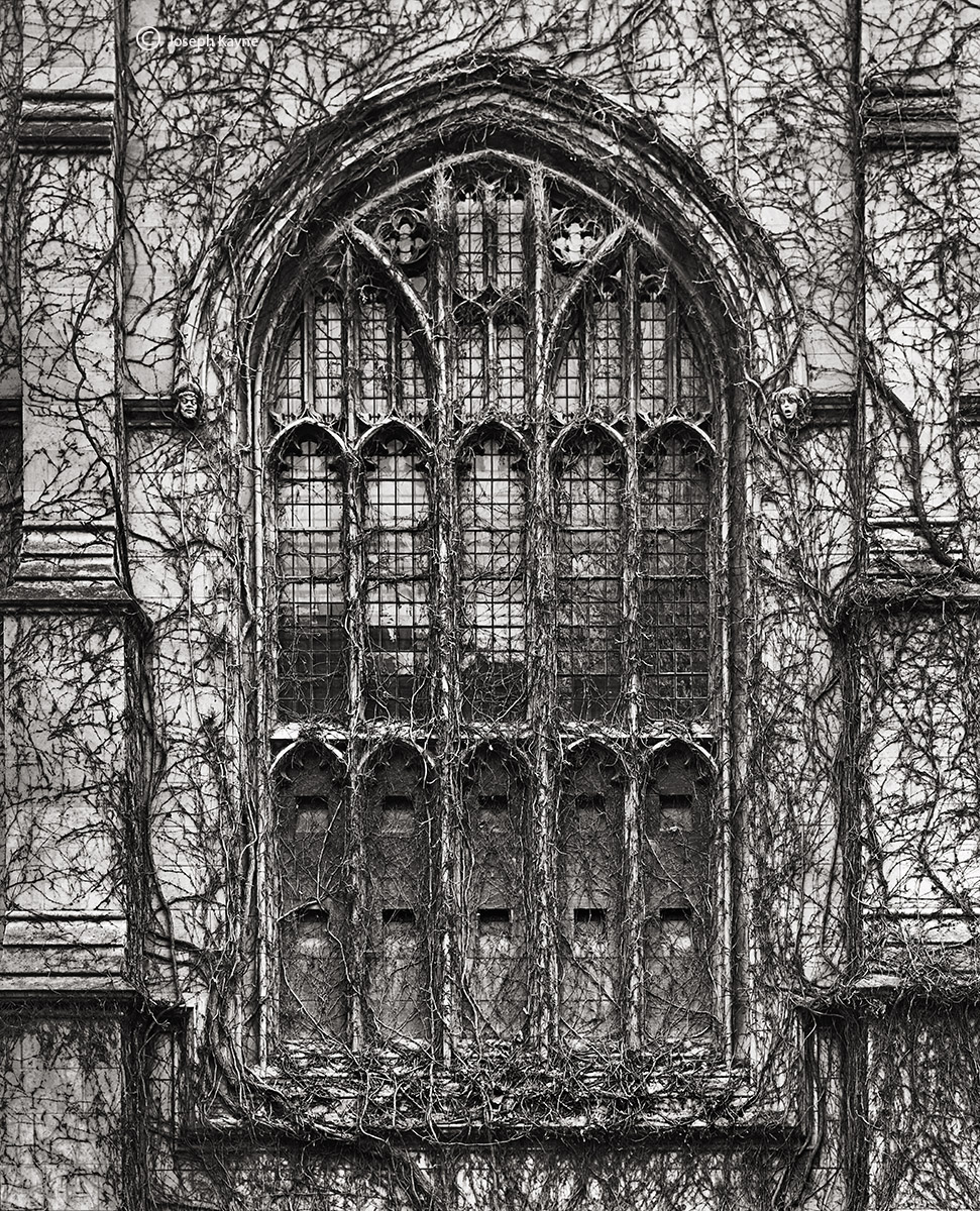 gothic,window,chicago, photo