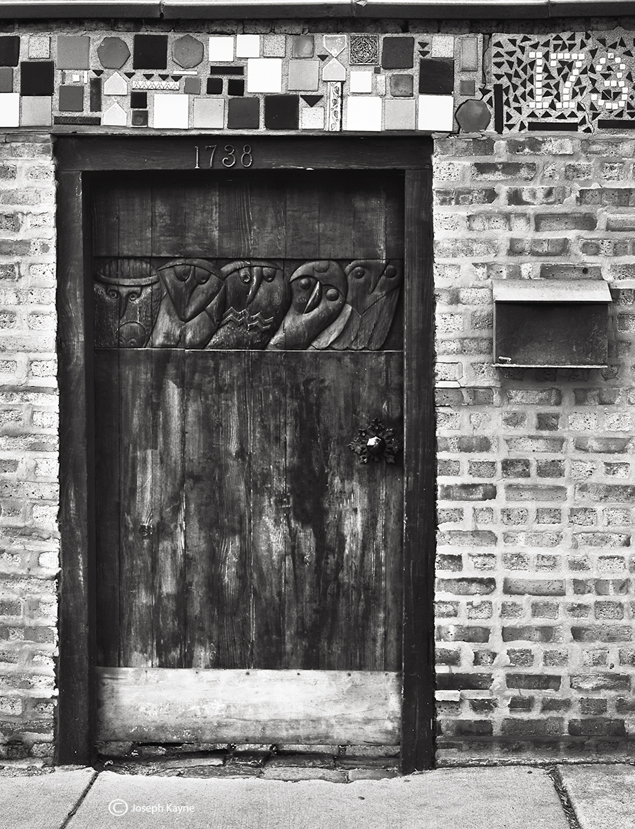 owl,door,chicago, photo
