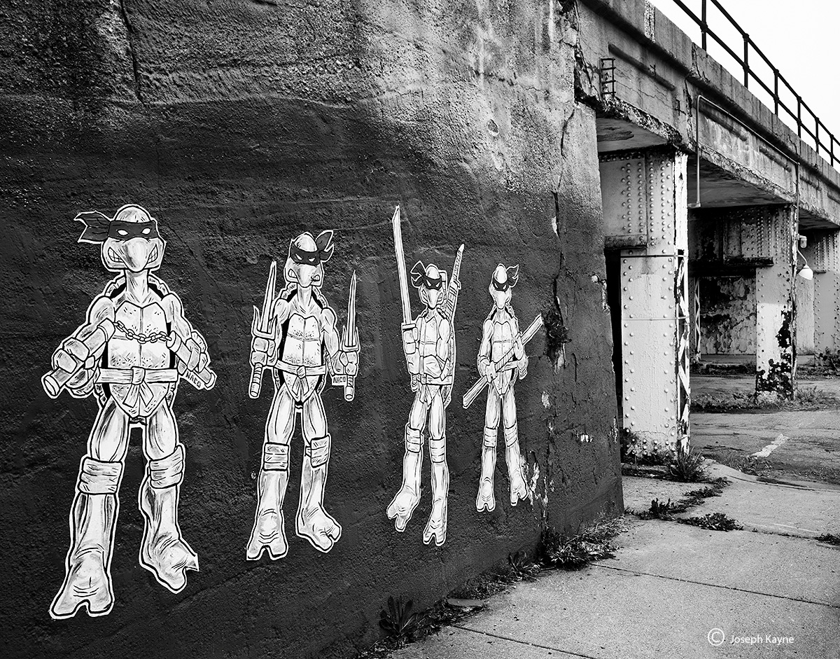 ninja,turtles,chicago,street,art, photo