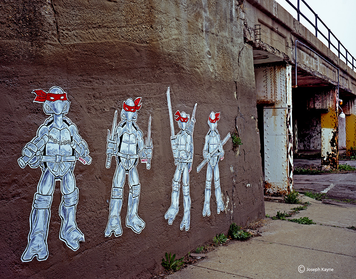 ninja,guardians,turtles,chicago,street,art,naco, photo