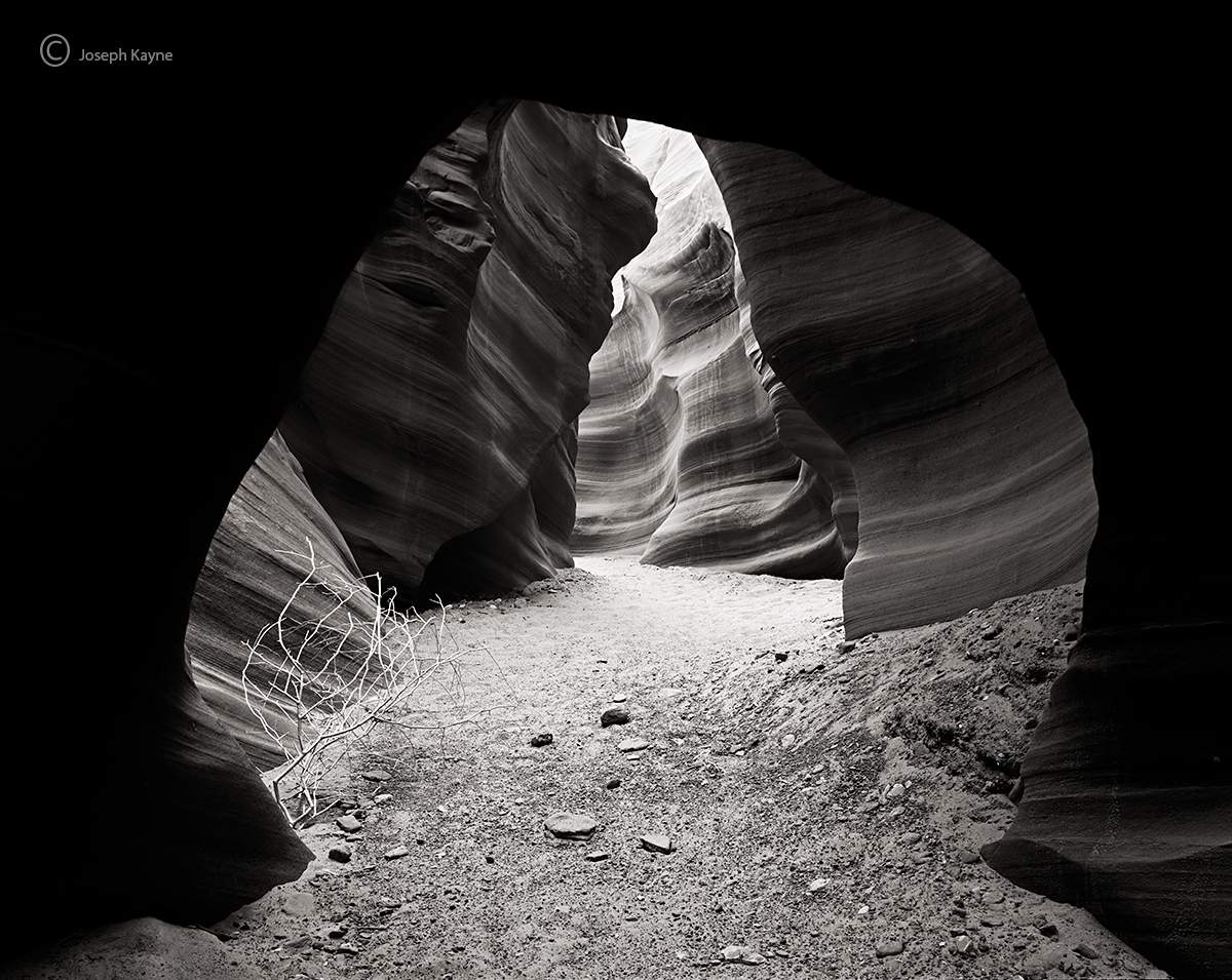 canyon,gateway,navajo,sacred,lands, photo