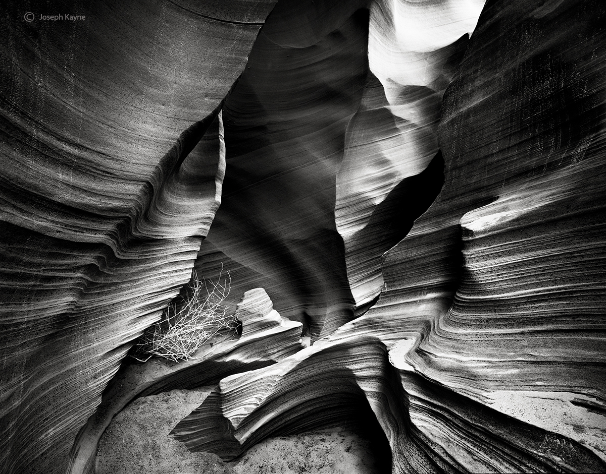 deep,in,the,canyon,navajoland,navajo,sacred,lands, photo