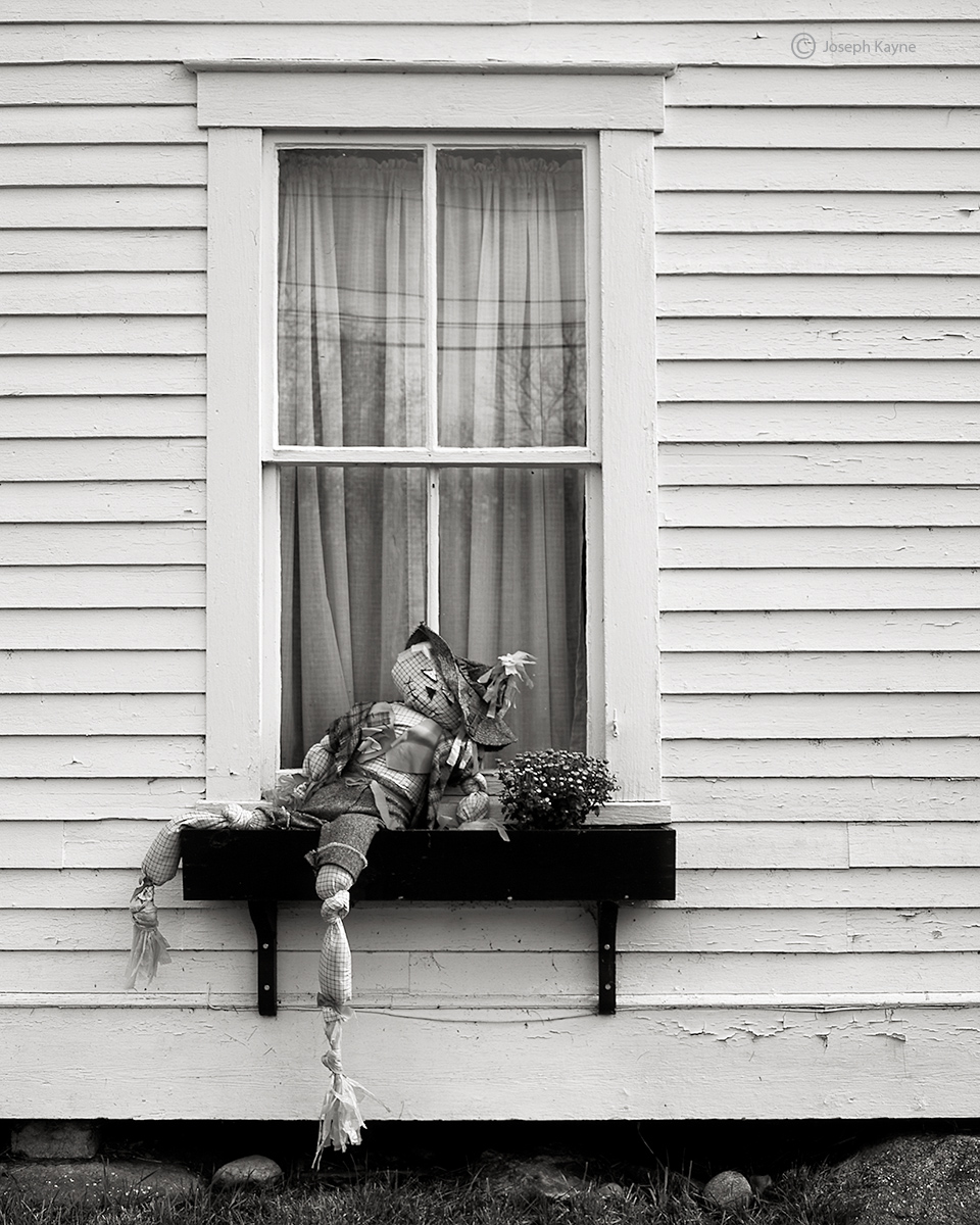 drunk,scarecrow,new,england, photo