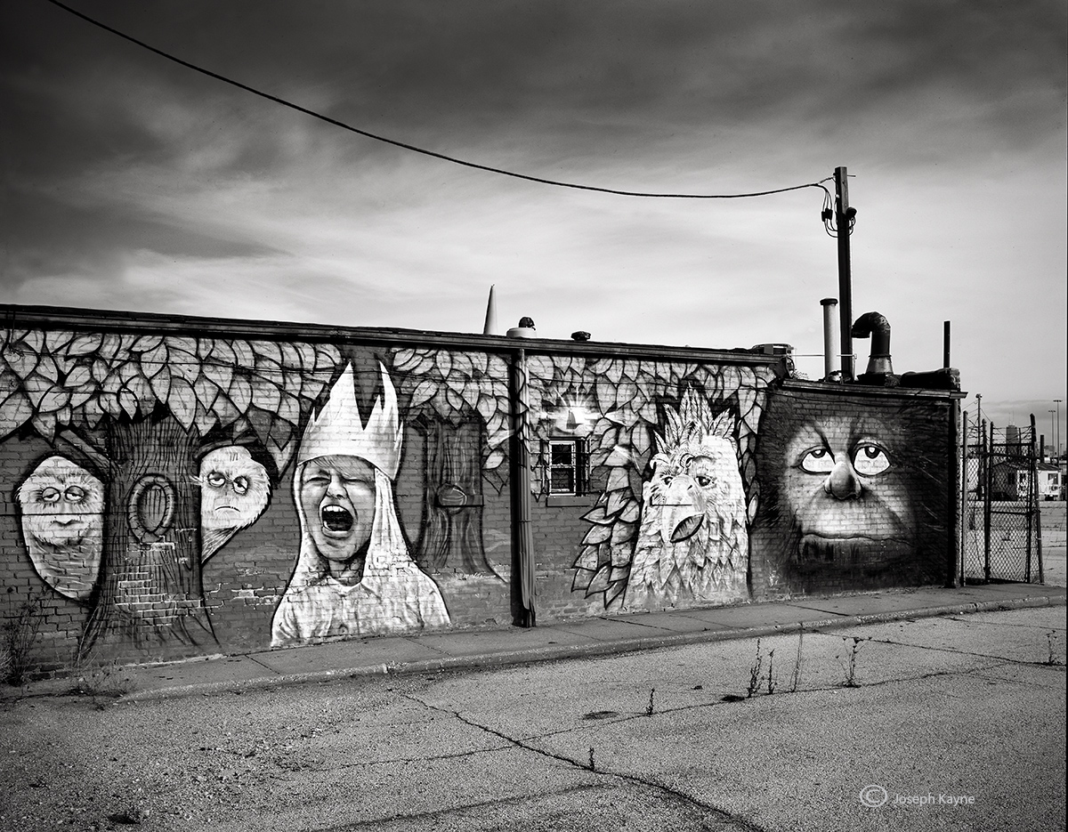 where,the,wild,things,are,chicago,street,art,mural, photo