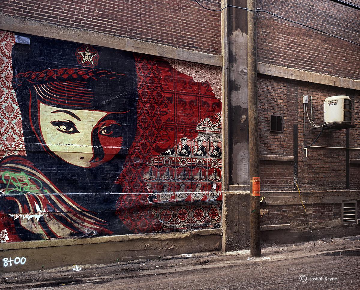 shepard,fairey,alley,chicago, photo