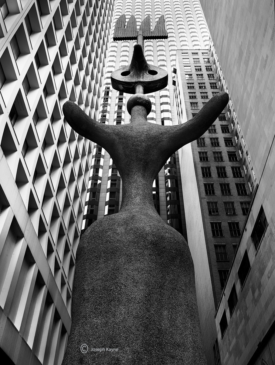miro,chicago, photo
