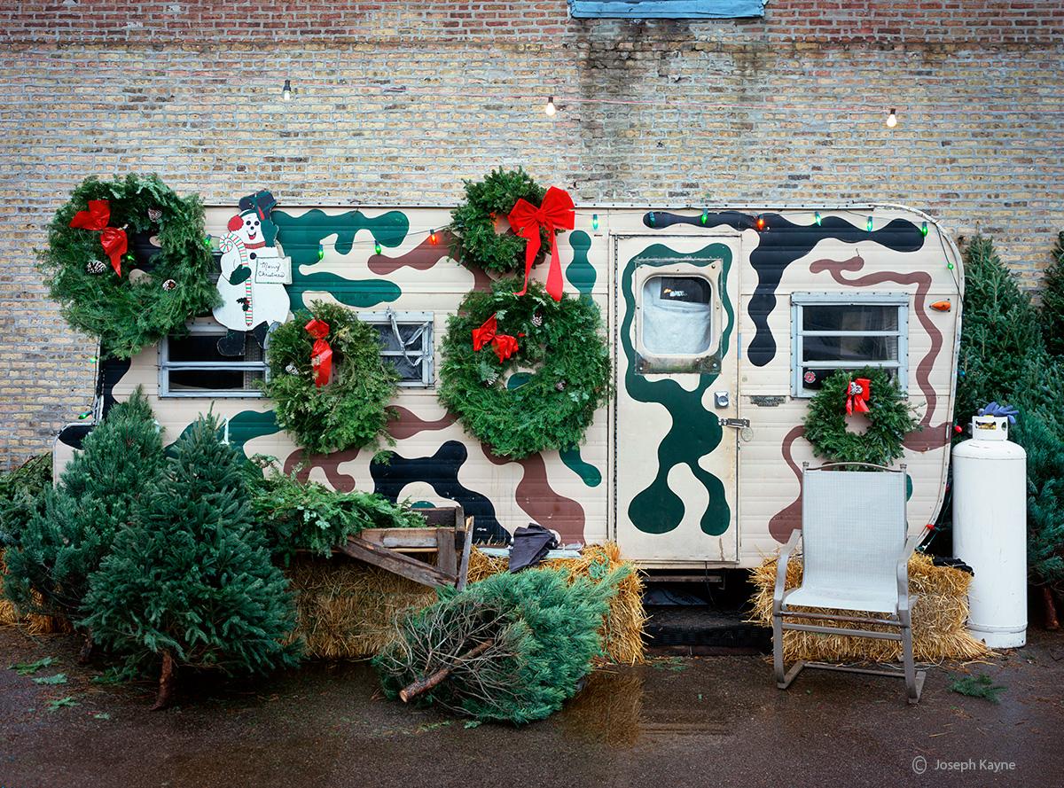 christmas,tree,lot,chicago, photo