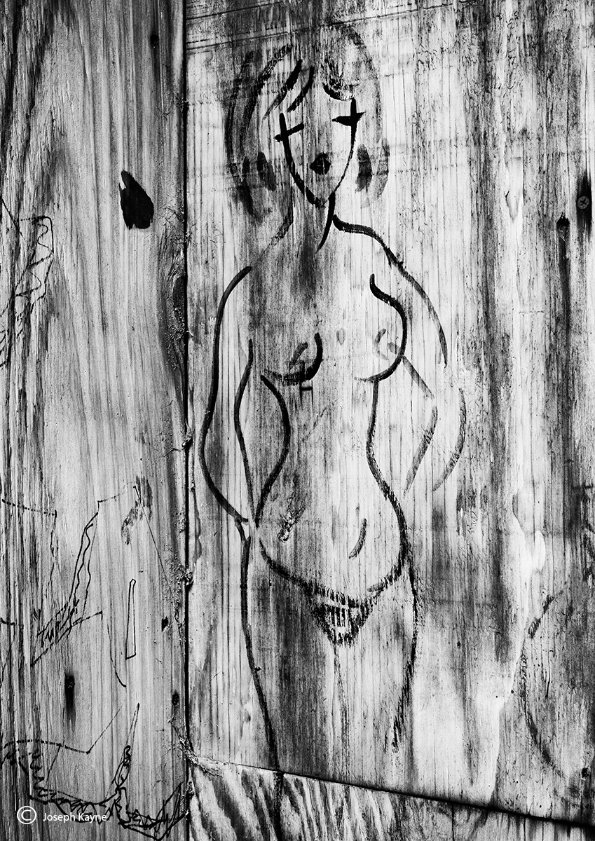 plywood,beauty,chicago,street,art,mural, photo