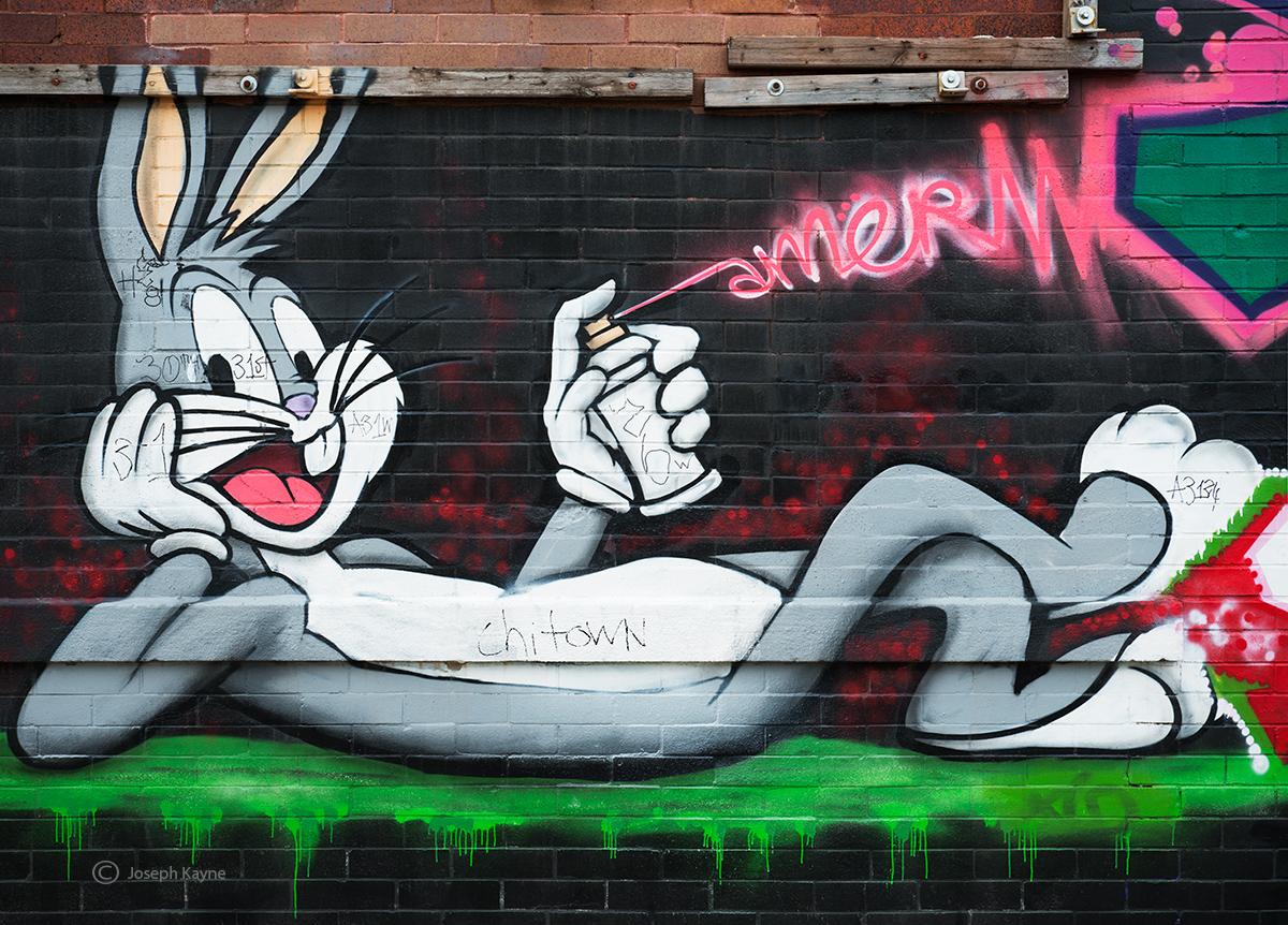 bugs,street,artist,chicago,street,art, photo