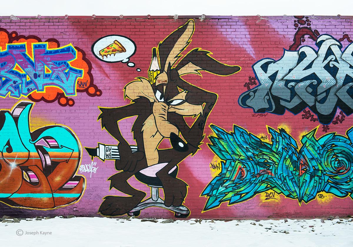 wile,e,coyote,street,art, photo
