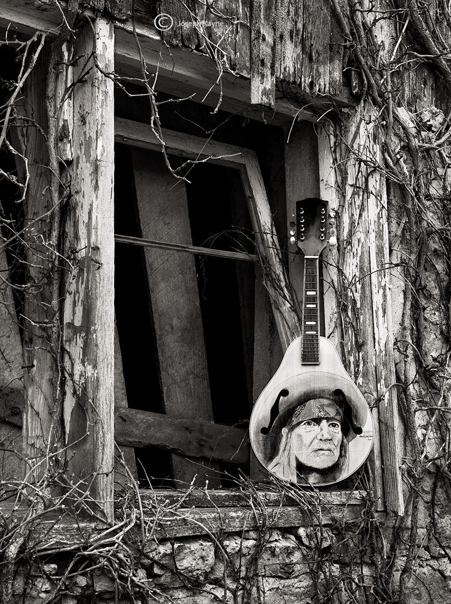 willie,mandolin,illinois, photo