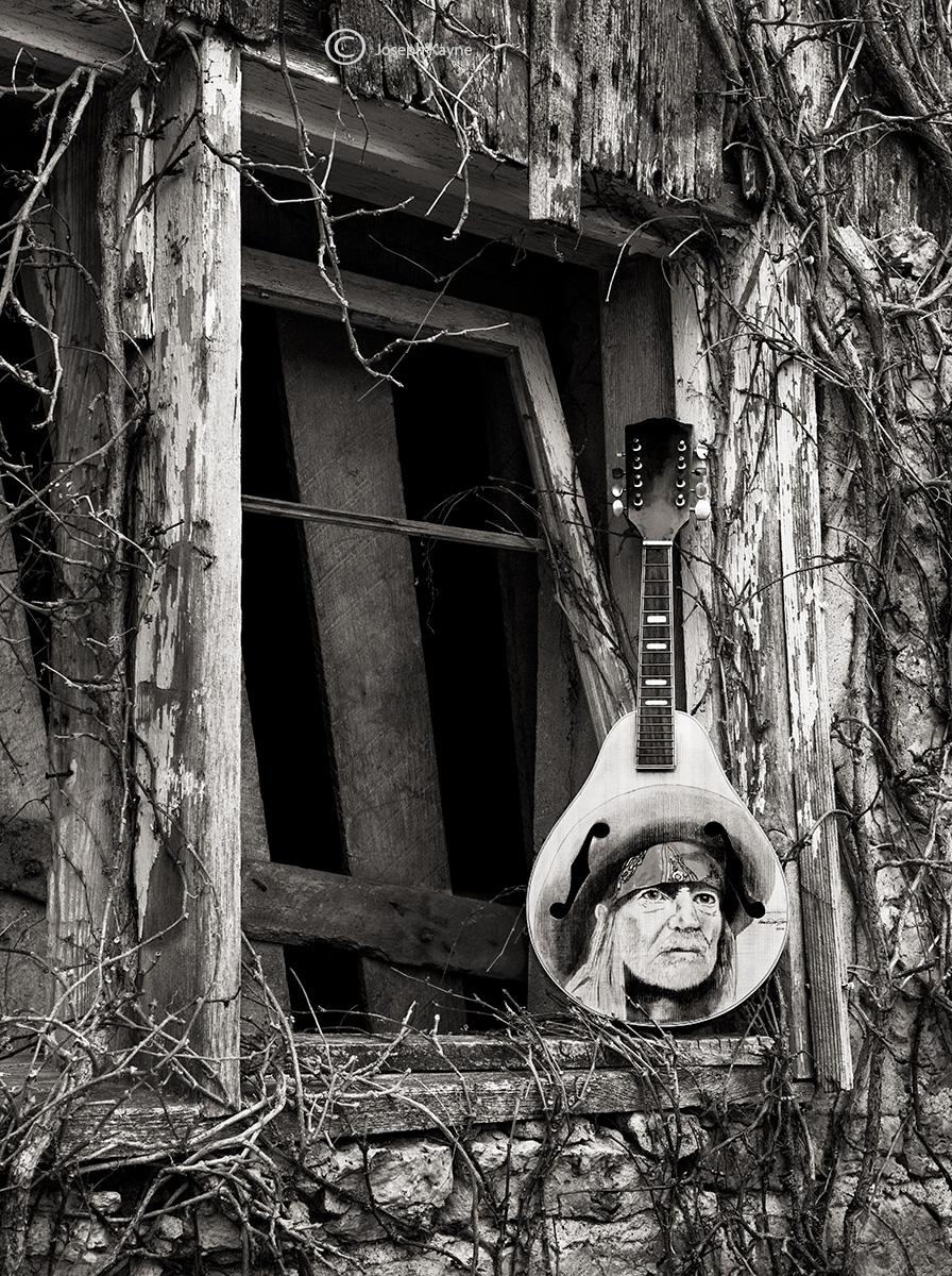 willie,mandolin,illinois, photo