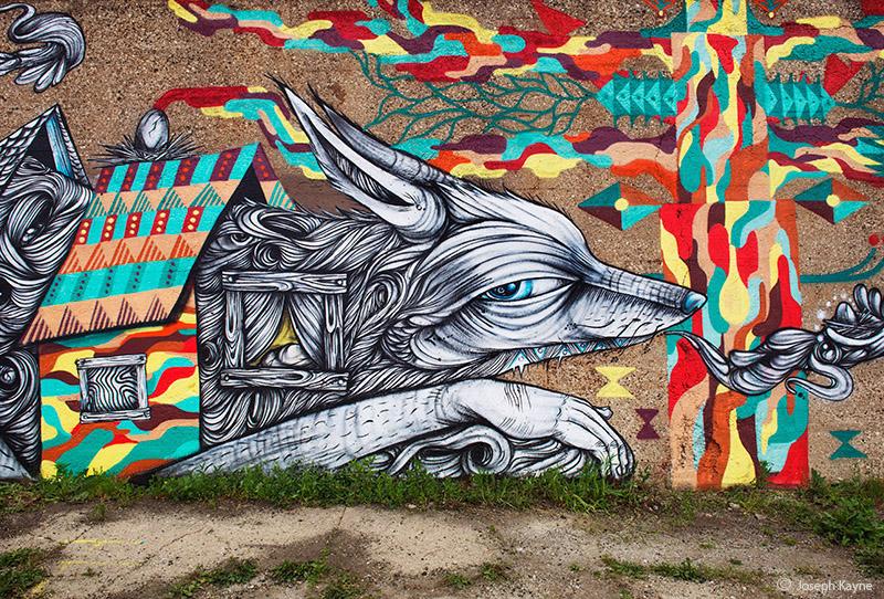 pilsen,fox,chicago, photo