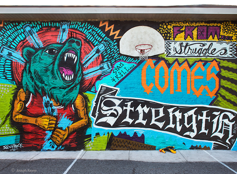 from,strugle,comes,strength,chicago, photo