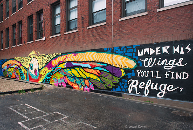 under,his,wings,you,will,find,refuge,chicago, photo