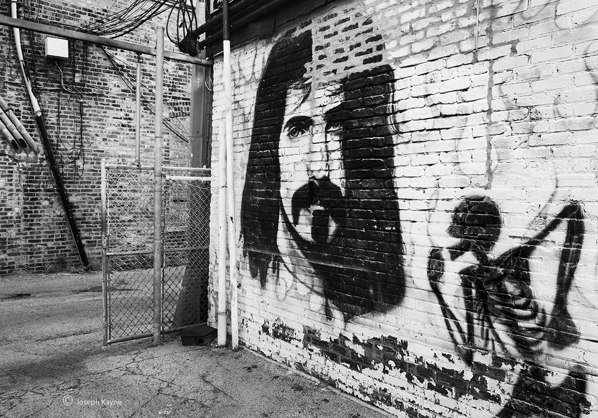 frank,zappa,lives,chicago,street,art, photo