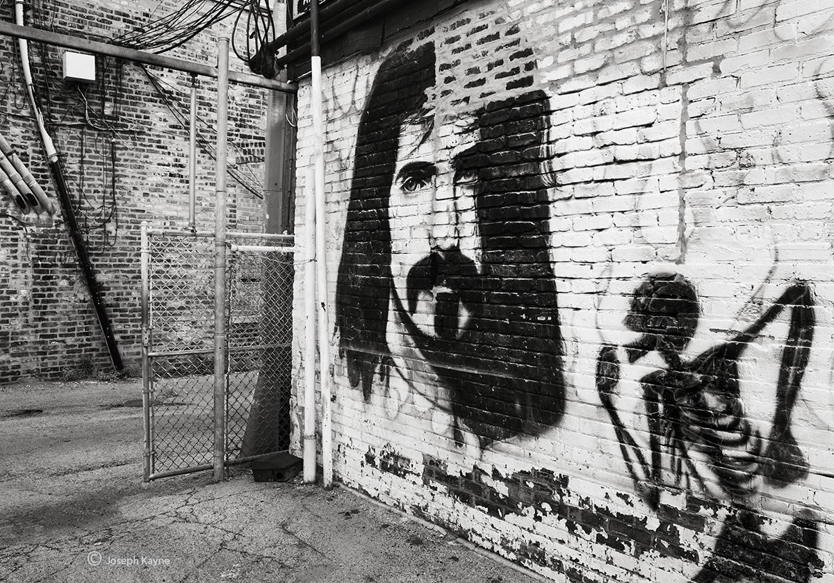 frank,zappa,lives,chicago,street,art, photo