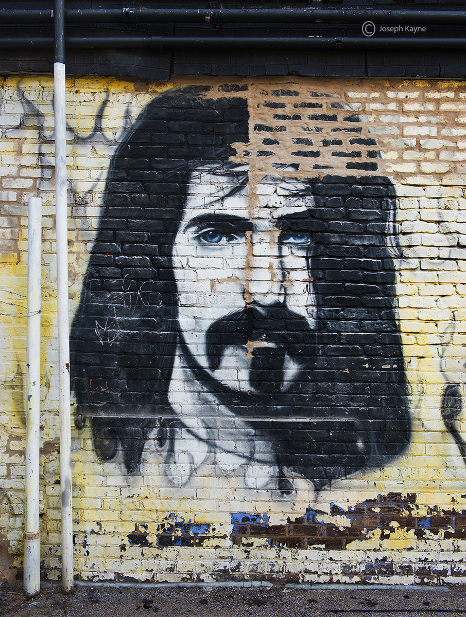 frank,zappa,wall,chicago, photo