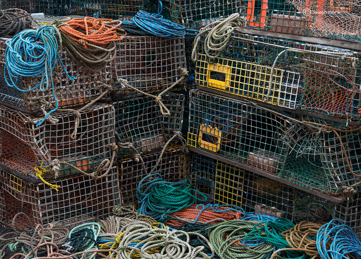 maine,lobster,traps, photo