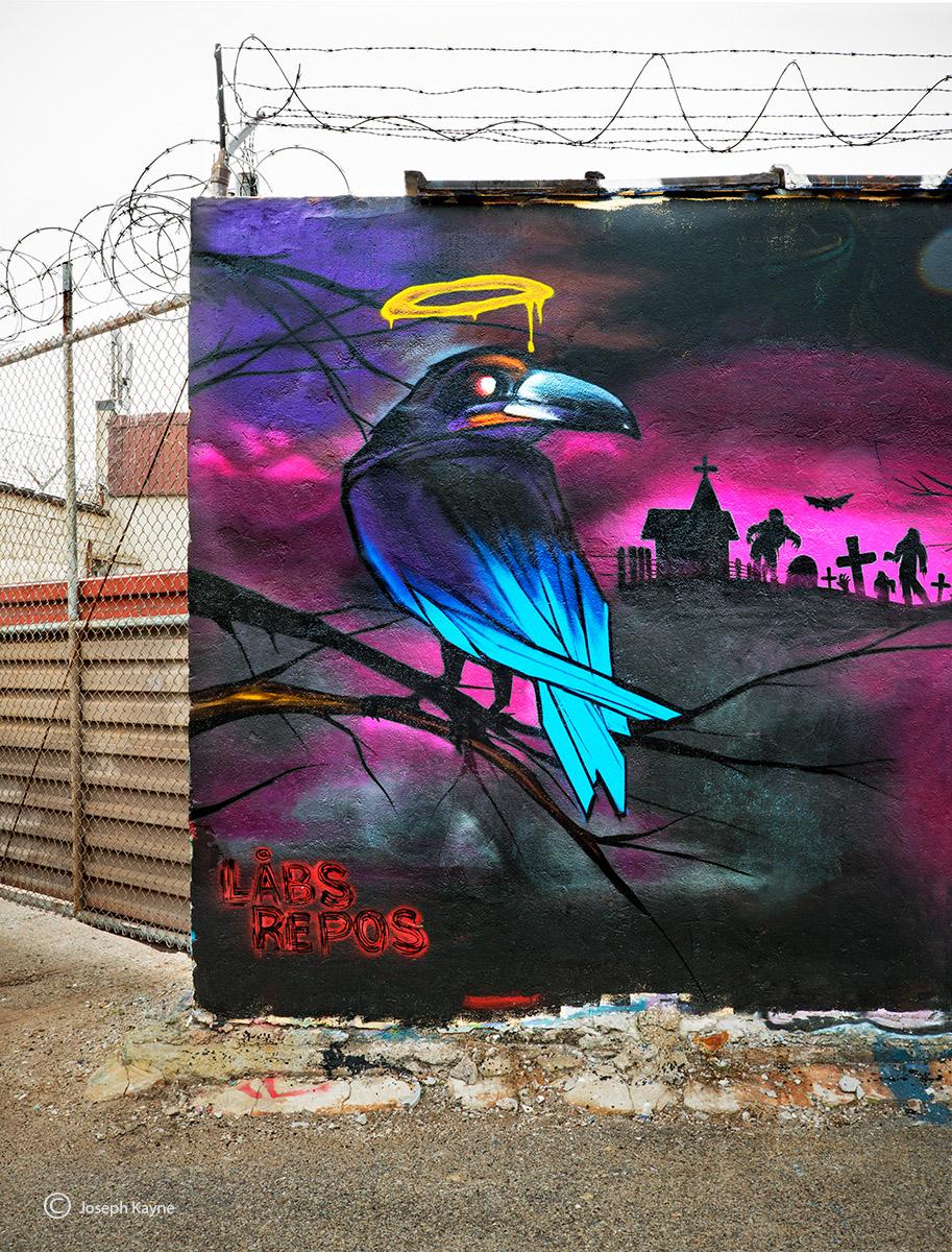 nevermore,chicago,street,art, photo